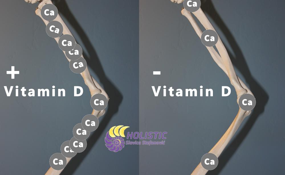 Holistic dr Slavica Stefanovic Skelet-Vitamin-D