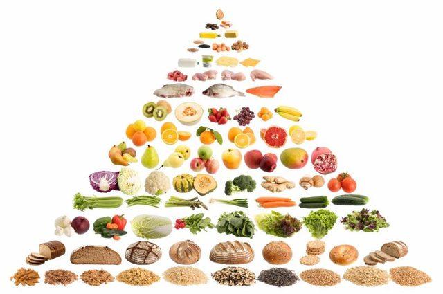 piramida hrane