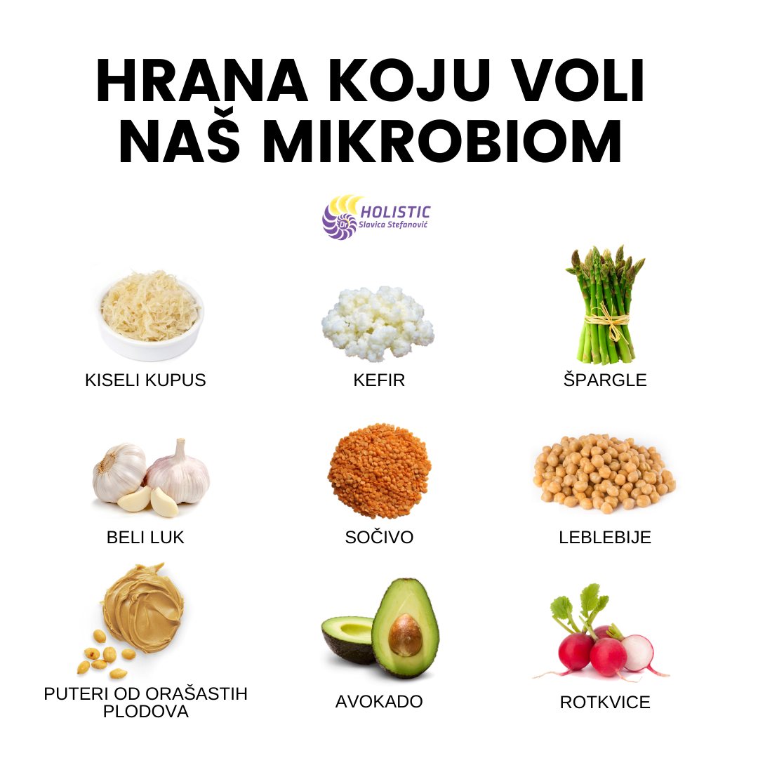 mikrobiom holistic dr slavica