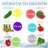 Hidratacija organizma hranom