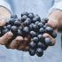 Kako usporiti starenje uz pomoć hrane?