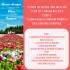 Alergije, alergeni i holistički put ka ozdravljenju